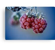Fat berries Canvas Print