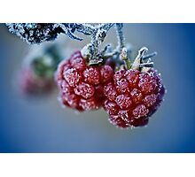 Fat berries Photographic Print