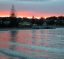 Evening at the Beach, Penguin, Tasmania, Australia. by kaysharp