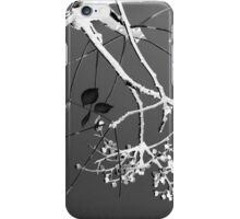Branches, Berries and Leaves iPhone Case/Skin