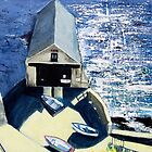 Old Lifeboat House, Lizard, Cornwall by Sue Nichol