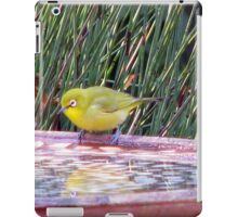 Cape White-eye iPad Case/Skin