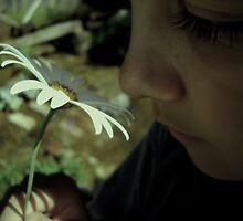 pushing up daises by LittleJaye