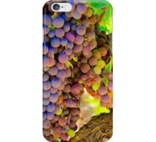 Light in the Vineyard iPhone Case/Skin
