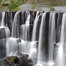 The ever delightful Ebor Falls by Clare Colins