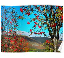 """The Ochil Hills featured in """"Your Country's Best"""" & """"Season's change"""" Poster"""