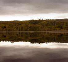 tranquil  by Adam Wakefield