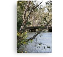 Tranquil Bush Scene in Victoria Canvas Print