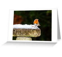 Robin on Snowy Birdbath Greeting Card
