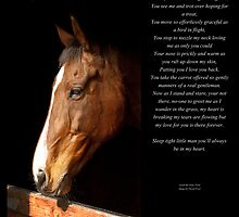 ode to biscuit by David Ford Honeybeez photo