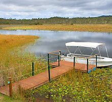 Mareeba Tropical Savanna and Wetland Reserve by Lesley Bray