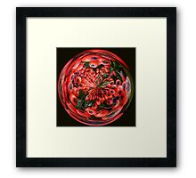 Red Berry in the round Framed Print