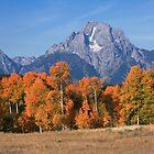 Teton Autumn by David Kocherhans