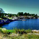 Beautiful Bay by Larry Trupp