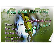 BANNER FOR THE GROUP Amphibians Features Poster