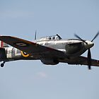 Hurricane by Tony Roddam