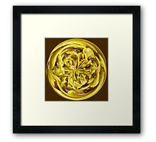 Sunflower in a globe Framed Print