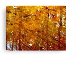 Mirroring Beauty Canvas Print