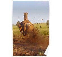 Hoon'en Horse Poster