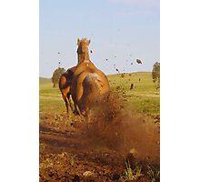 Hoon'en Horse Photographic Print