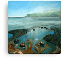North Yorkshire Coast Canvas Print