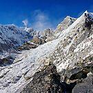 A Snowy Wilderness by Harry Oldmeadow