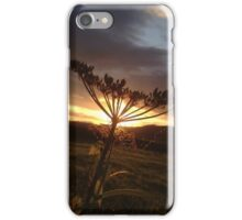 Behind the light  iPhone Case/Skin