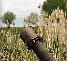 Abandoned Pipe by tc5953
