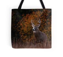 Early fall rut - White-tailed Deer Tote Bag