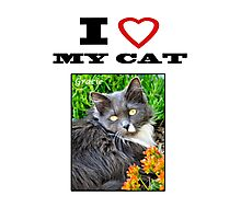I LOVE MY CAT - Gracie Photographic Print