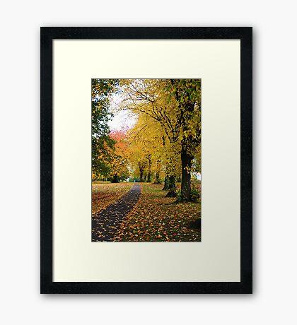 Autumn Call Framed Print