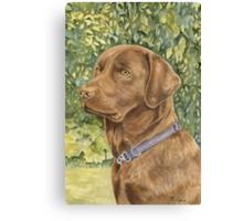 Holly the Chocolate Labrador (Final Version) Canvas Print