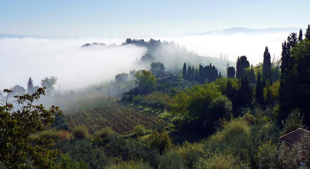 Mist in the Valley. by artfulvistas
