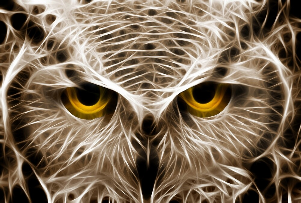 The Owls Are Not What They Seem by Mikhail Palinchak