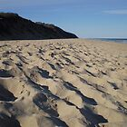 Marconi Beach, Cape Cod by oscars