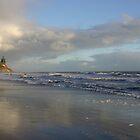 Hendry's Beach, Santa Barbara by MichelleRhea