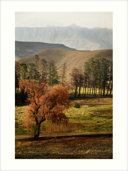 Drakensberg, South Africa by Sharon Bishop