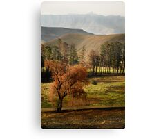 Drakensberg, South Africa Canvas Print