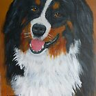  &quot;TURK&quot; Bernese Mountain Dog by Woodie