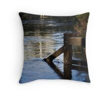 go down to the river Throw Pillow