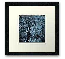 Blue tree monochrome autumn willow Framed Print