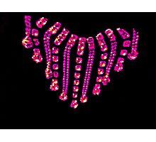 Pink Jewels Photographic Print