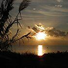 Orange glow Cyprus sunrise by Angela McIntyre
