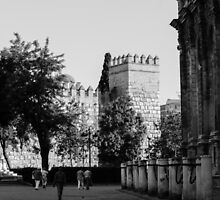 Seville - Cathedral and the Alcazar by Andrea Mazzocchetti