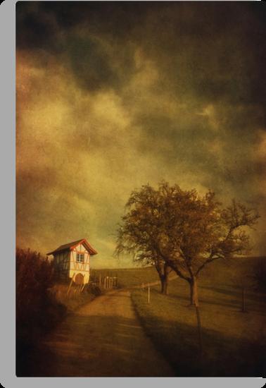 Little vineyard house by Priska Wettstein