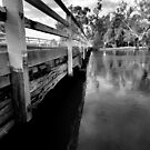 stock route bridge in flood wodonga,black & white by dmaxwell
