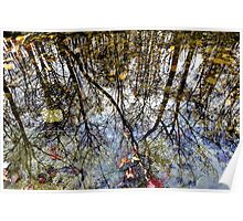 Stone Creek Reflections Poster
