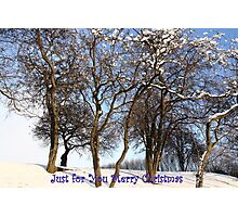 Just for You Merry Christmas Photographic Print
