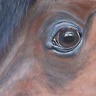 Eye Eye by Angela McIntyre