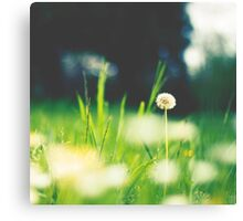 just one Canvas Print